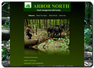 Big Dog Web Design :: Arbor North