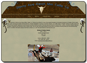 Big Dog Web Design :: Stormy Acre Ranch Mini Cattle Co.